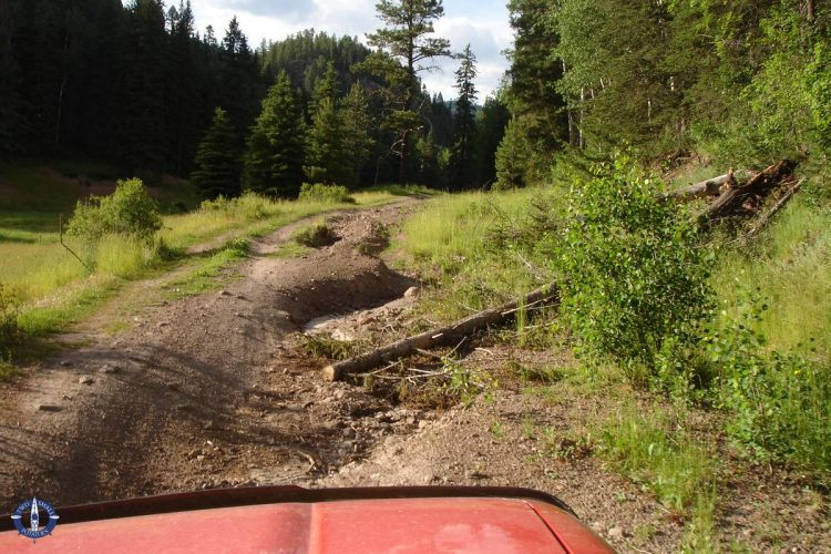 Exploring off road in our 4Runner in the Jemez Mountains of New Mexico