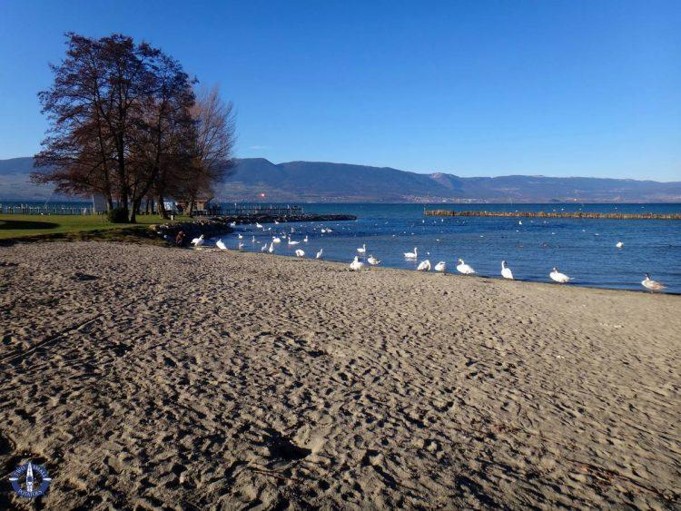 Beach at Lake Neuchatel, Switzerland