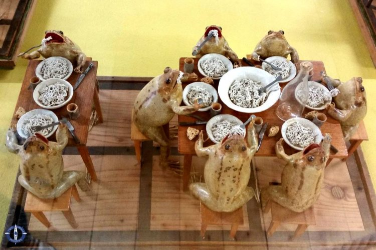 Stuffed frogs at the Musee des grenouilles in Estavayer-le-Lac, Switzerland