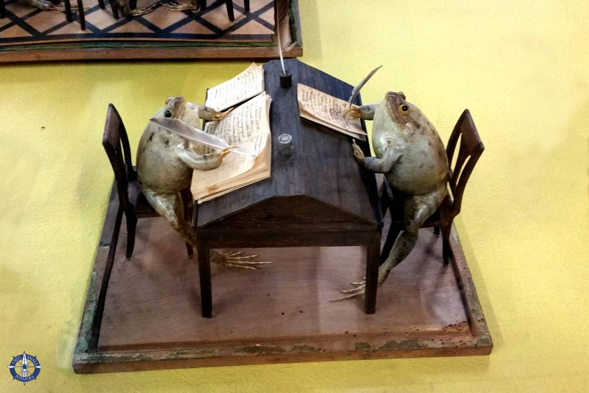 Stuffed frogs at the frog museum in Estavayer-le-Lac, Switzerland