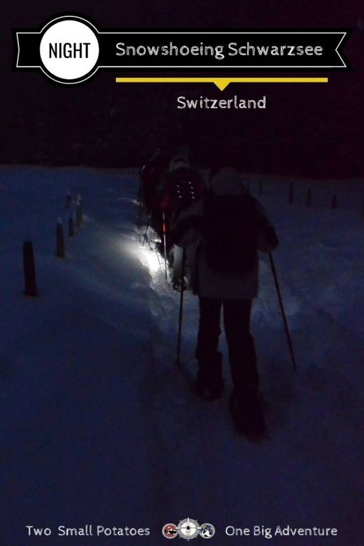 PIN for Moonlight Snowshoe Trek in Switzerland by Two Small Potatoes Travel