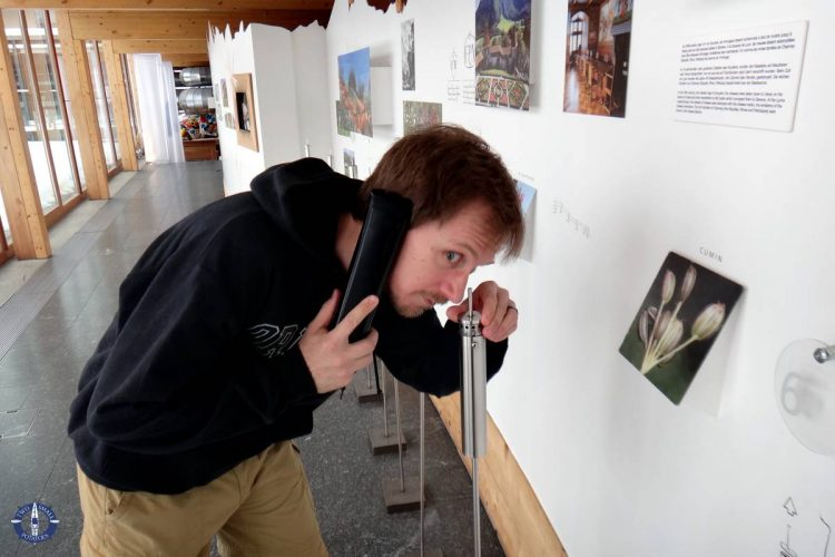 Travis sniffing plant samples at the Gruyere cheese museum