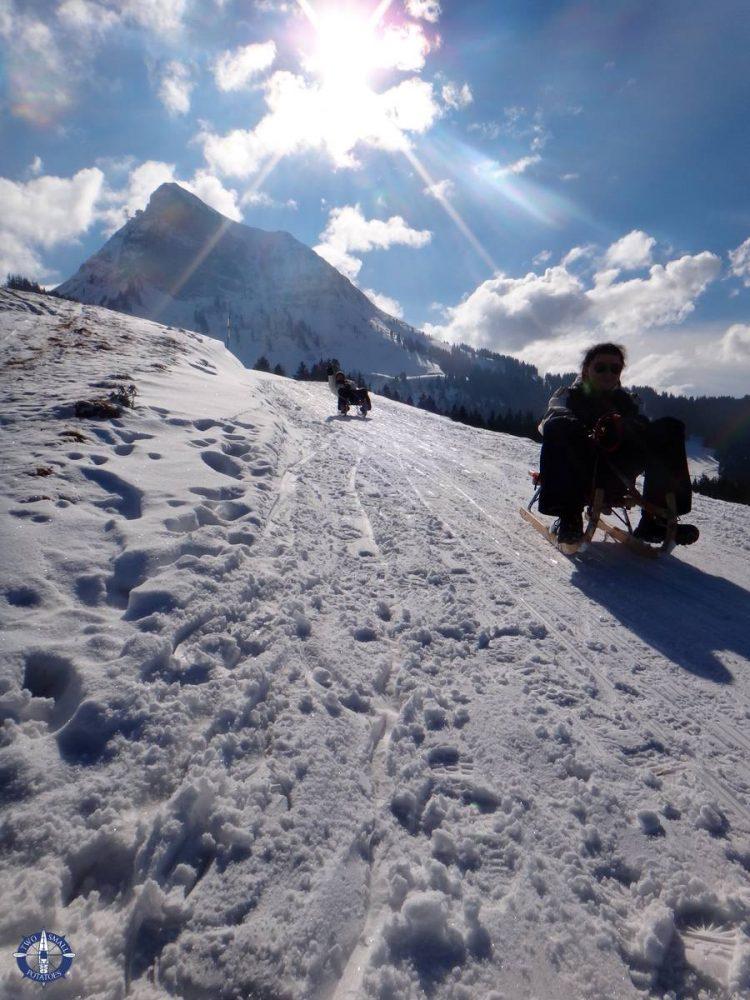 Epic sledding at Moleson in Switzerland