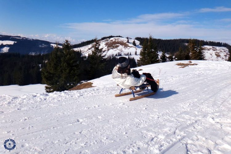 Sledding with friends in Fribourg canton