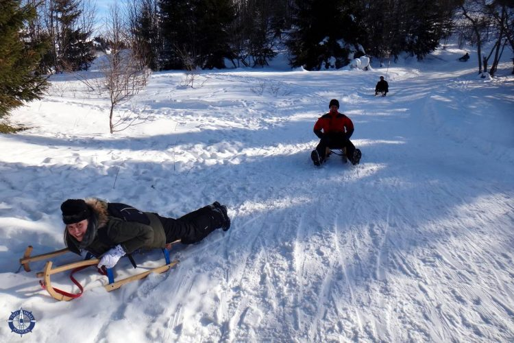 Sledging with friends at Moleson in Switzerland