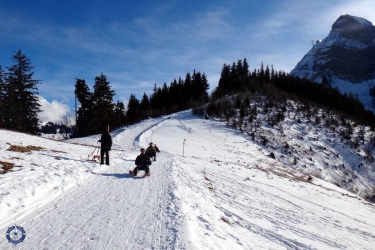 Moleson sledding run in the Swiss Alps