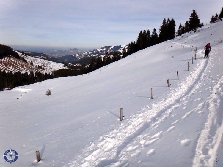 Trail in the snow at La Berra