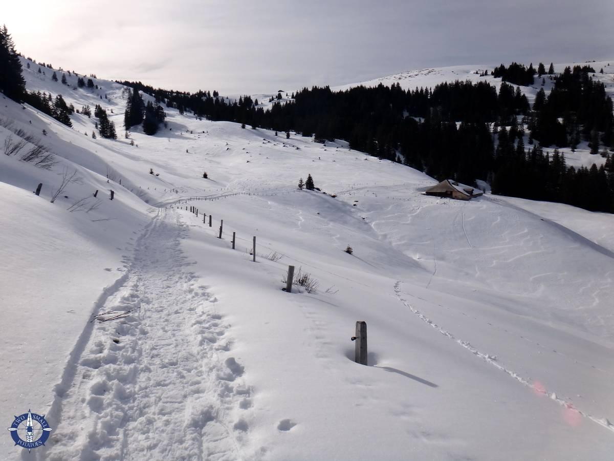 Our trail snowshoeing La Berra in Switzerland