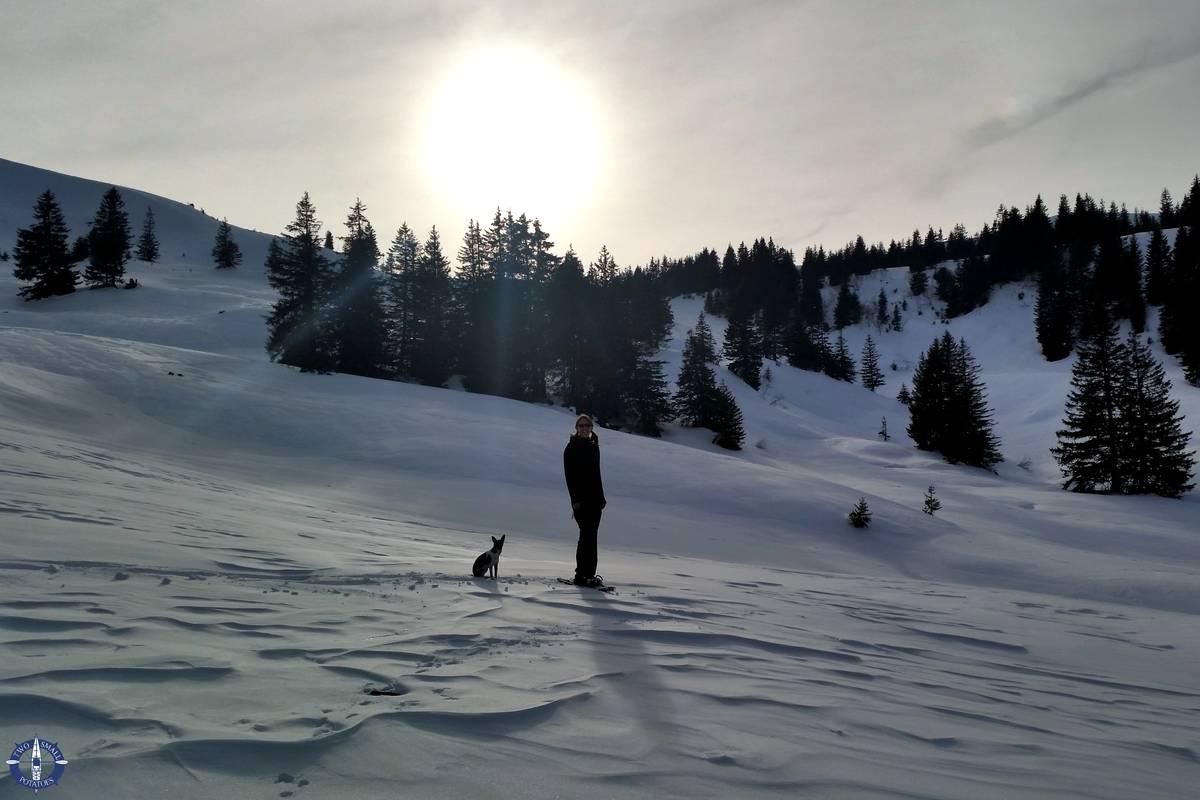 Snowshoeing La Berra, Switzerland at dusk
