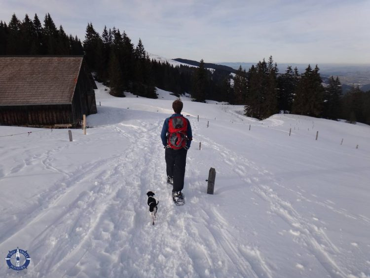 Travis snowshoeing with our dog in Fribourg canton