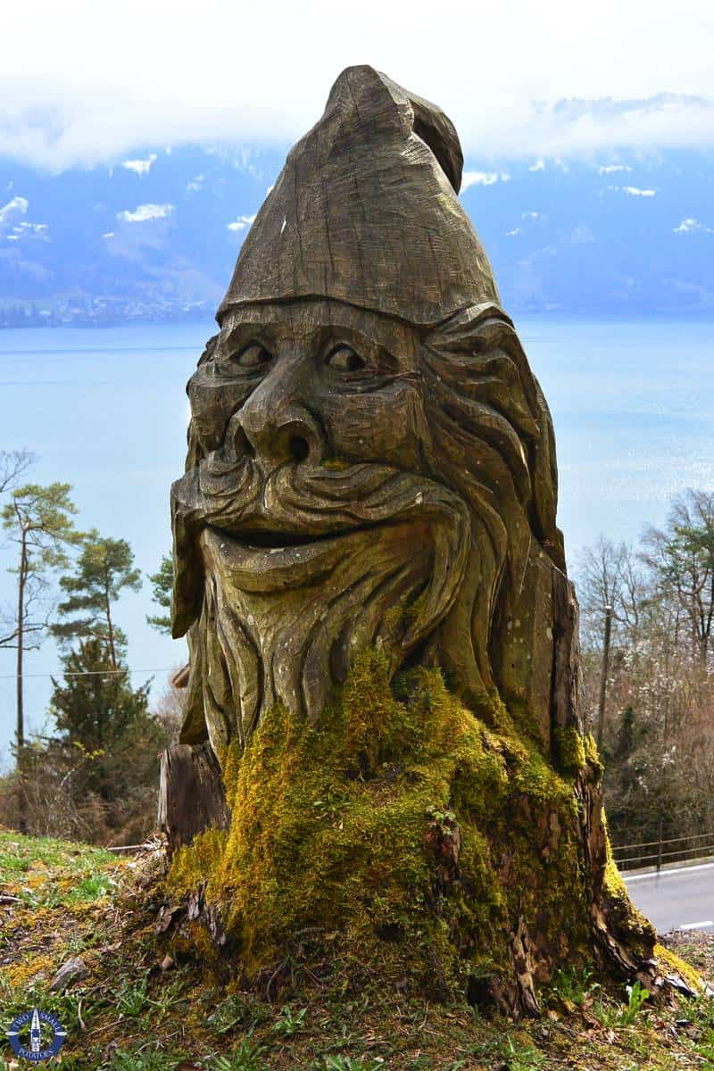 Carved face in a tree above Thun Lake in Switzerland