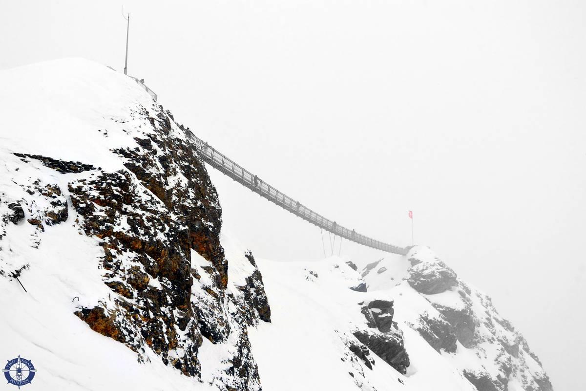 Peak Walk by Tissot suspension bridge in Switzerland