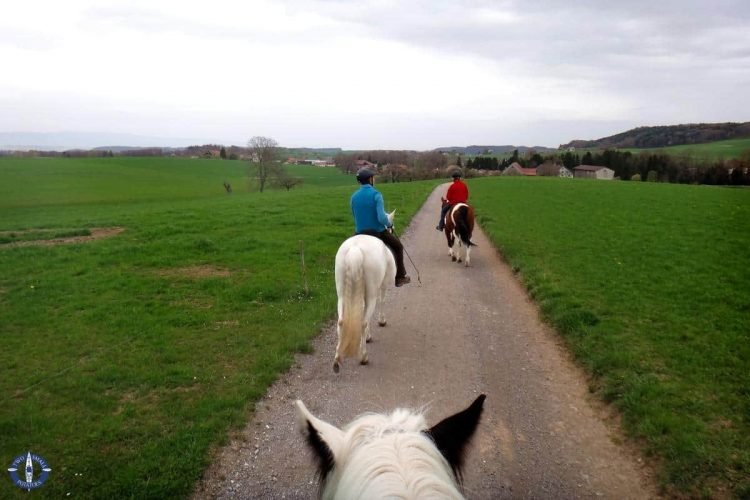 Horseback riding in Switzerland with Chestnut Stables near Fribourg