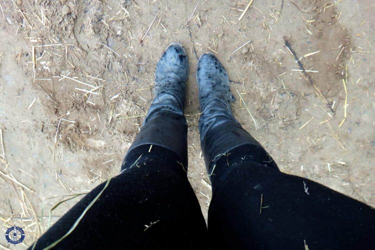 My dirty clothes after horseback riding in Switzerland for the first time