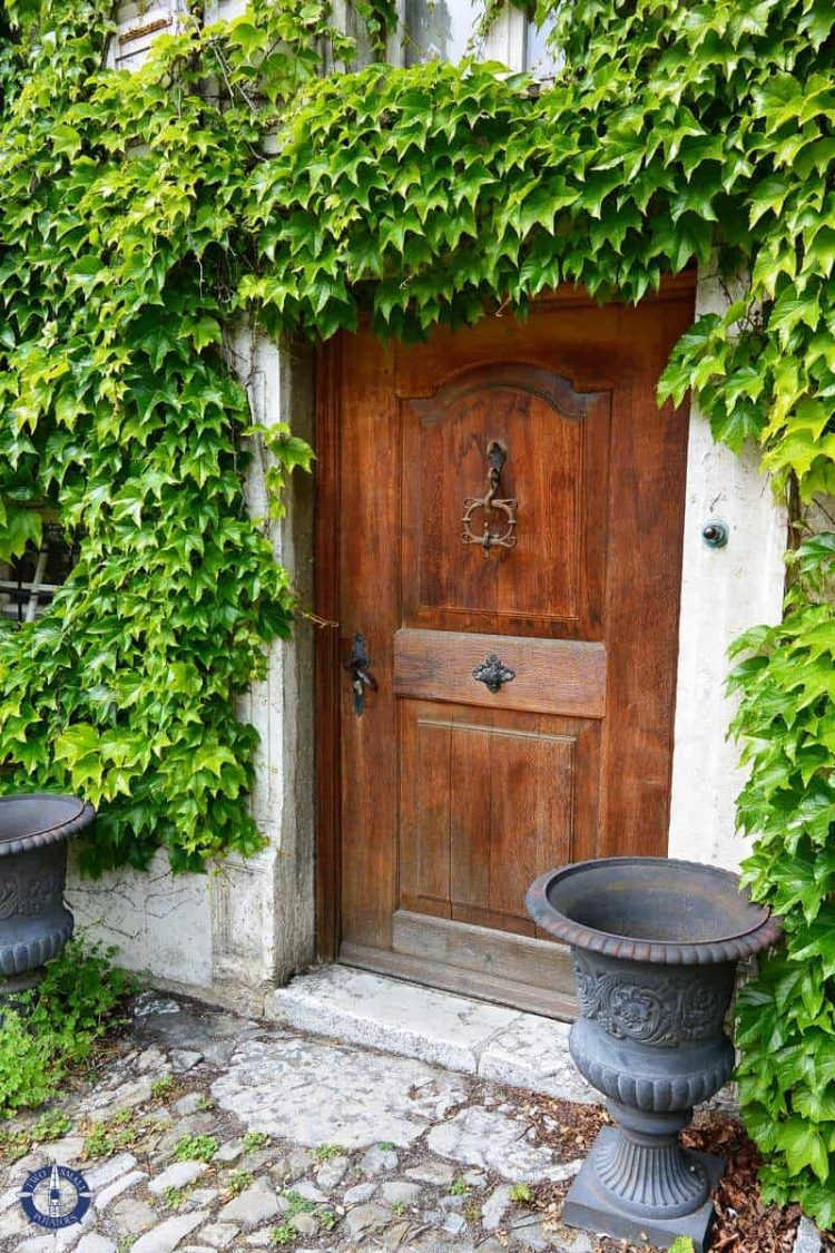 Image of old door and climbing ivy for sale on Fine Art America