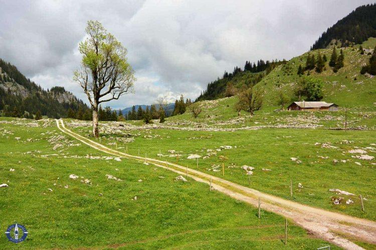 Hiking trail through Brecca Gorge, Switzerland