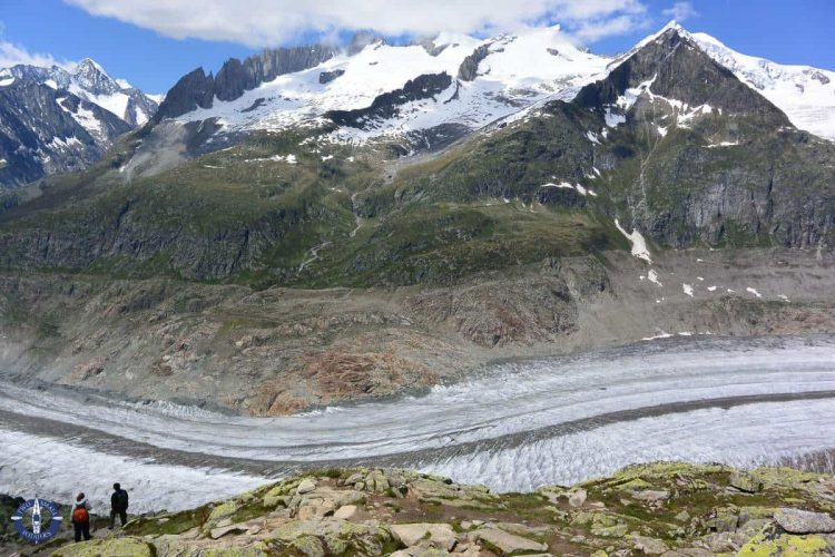 Aletsch Glacier from the trail to Hohbalm