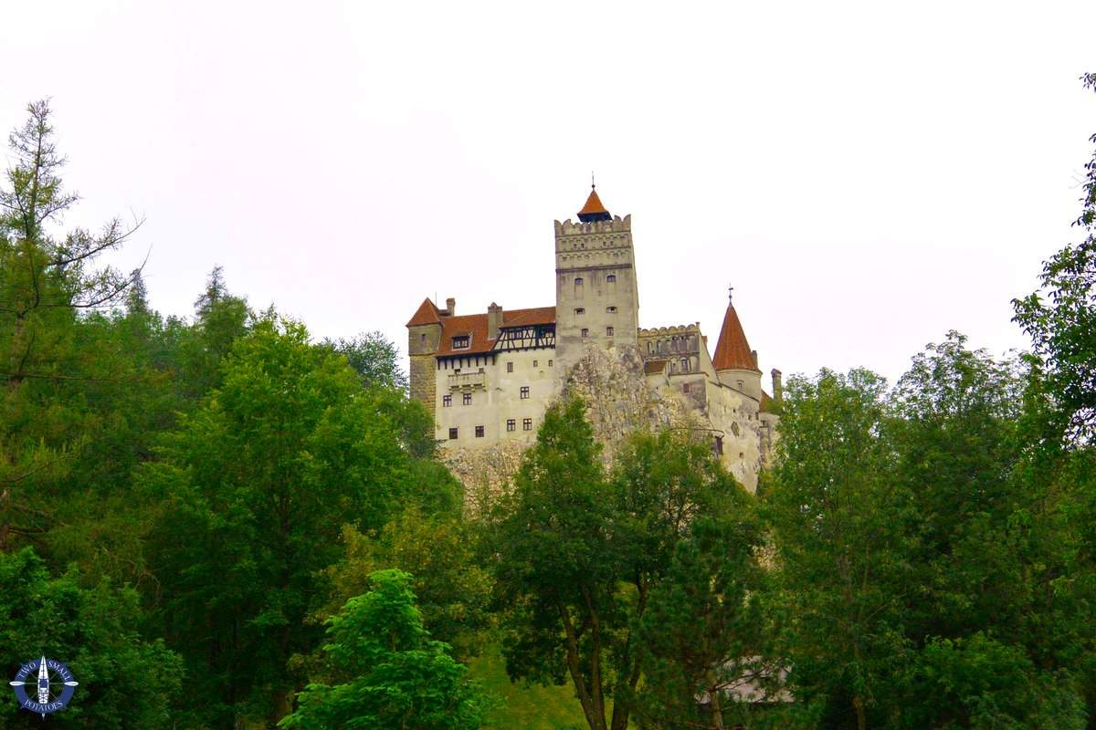 Bran Castle in the trees on a hill in Romania