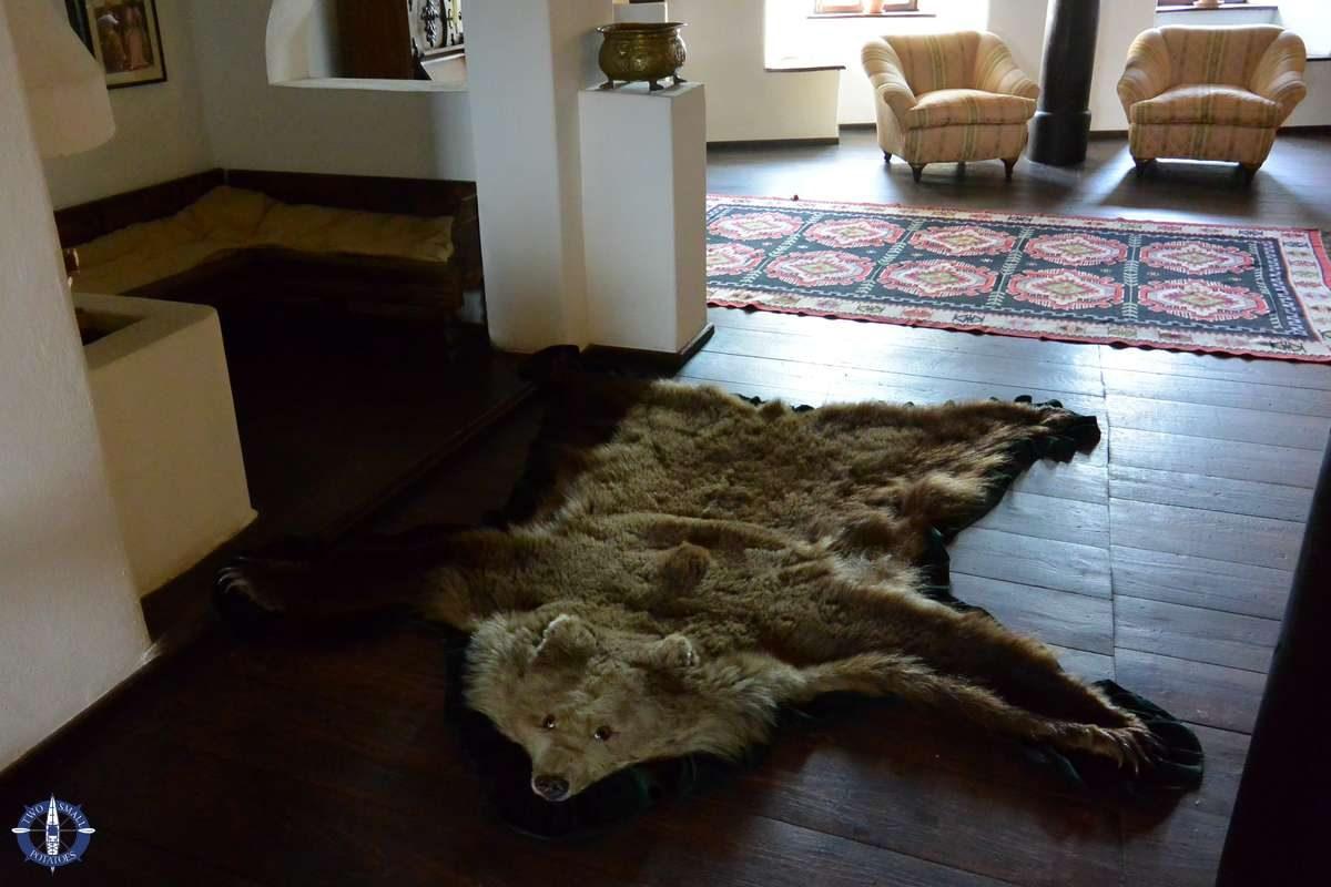 Bear rug at Bran Castle, Romania