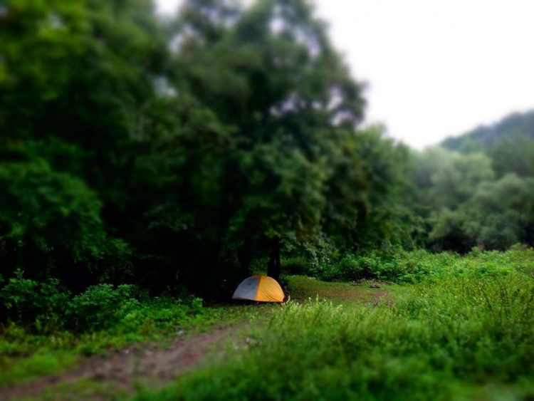 Camping in a haunted forest in Romania, bucket list item