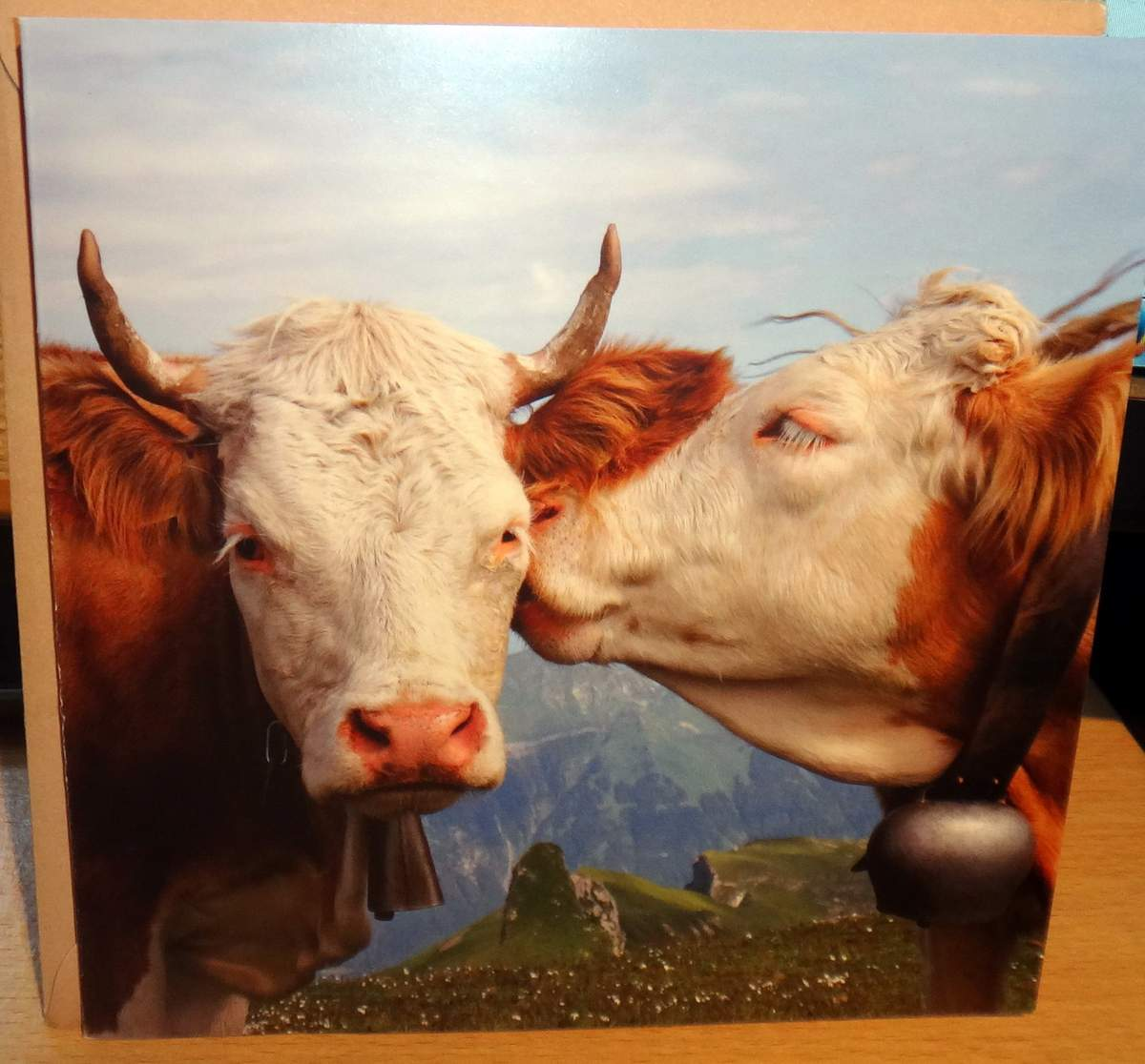 Goodbye card from friends in Switzerland