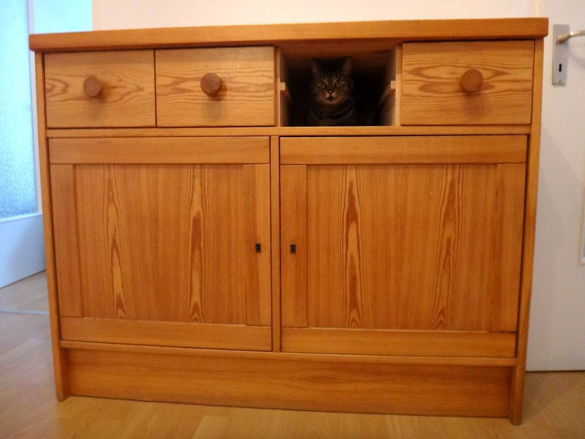 Our cat finds a hiding place during our first day in our new apartment in Germany