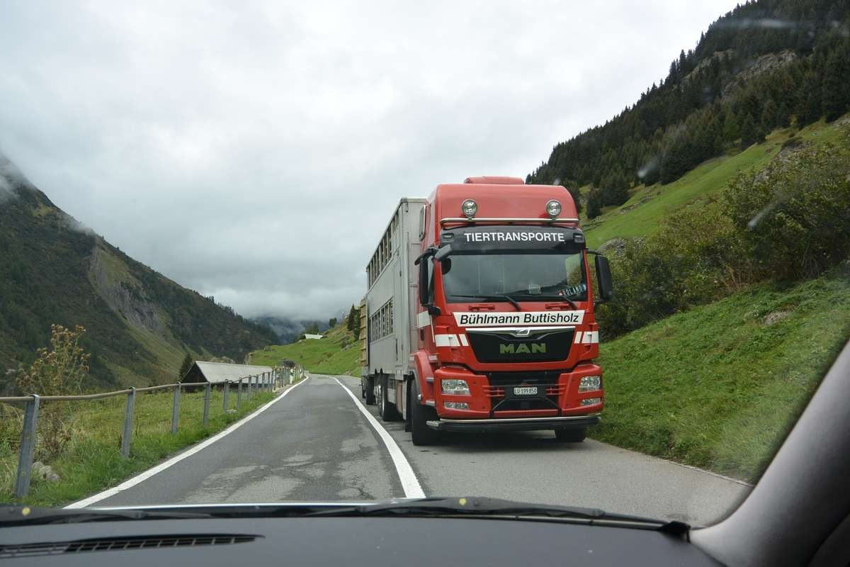 Swiss semi on a country road and more tips for driving in Europe
