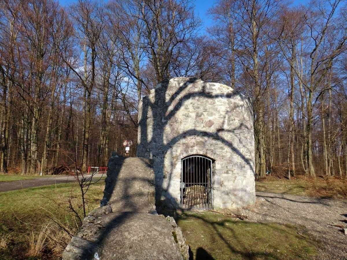 Ruine Rieswarte, Nikolausberg, Germany