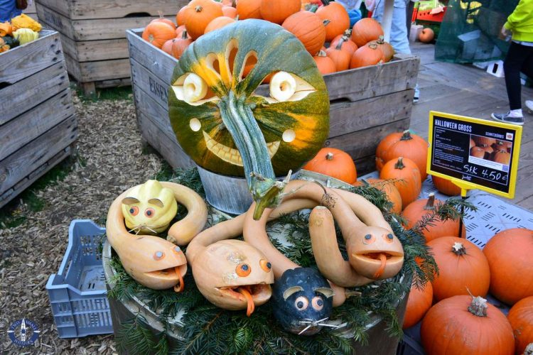 Artistic carved gourds at the Ludwigsburg Kuerbis Ausstellung in Germany
