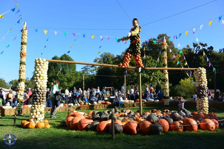 Circus acrobat in Ludwigsburg, the largest pumpkin festival in the world