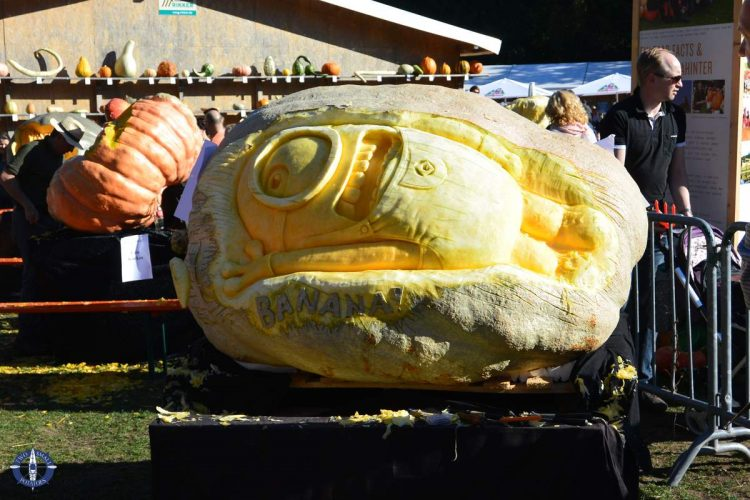 Huge carved Despicable Me minion pumpkin at the world's largest pumpkin festival in Ludwigsburg