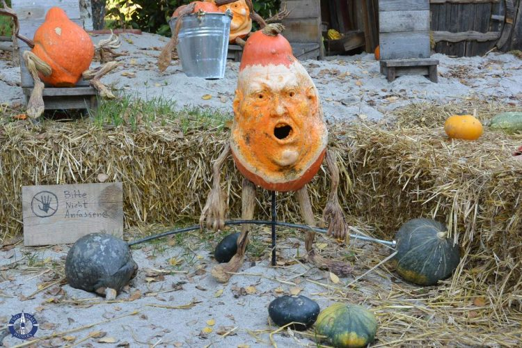 Ray Villafane's pumpkins at the world's largest pumpkin festival in Ludwigsburg, Germany