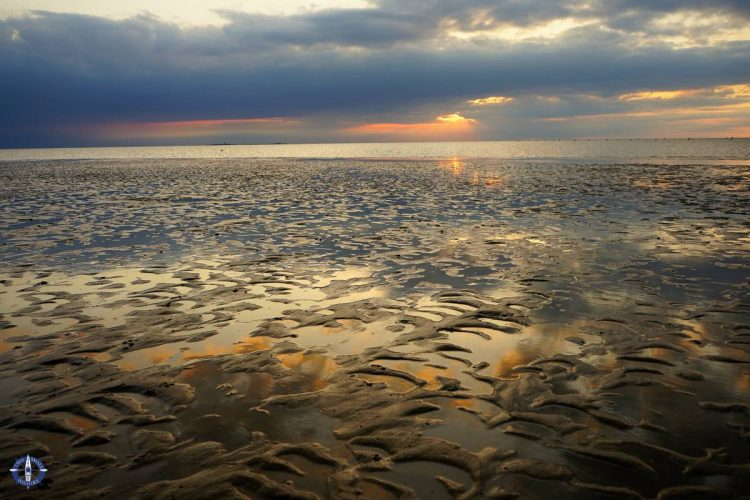 Sunset over the mudflats in Lower Saxony Wadden Sea National Park