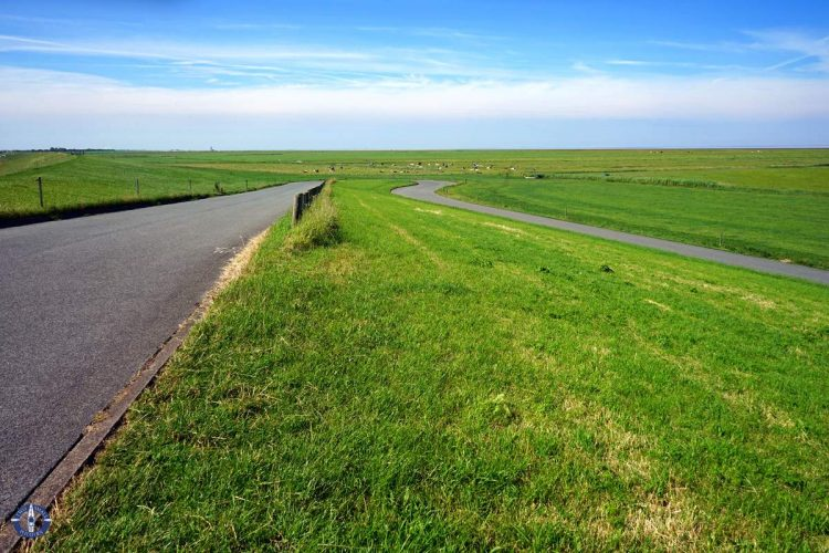 Green fields below the dyke along Germany's Wadden Sea coast